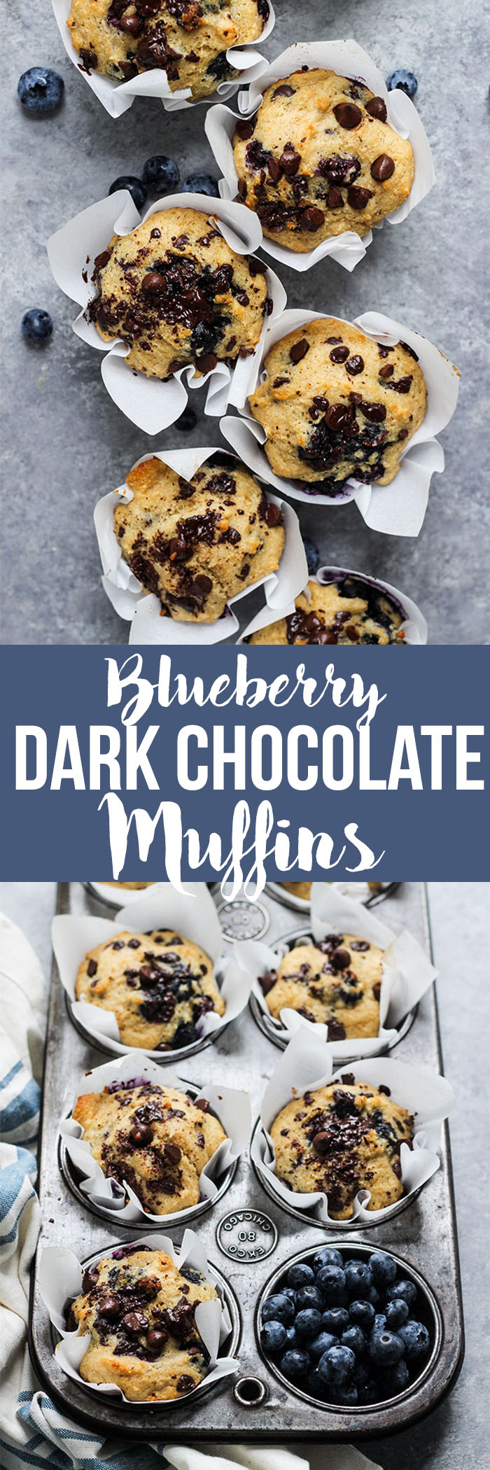 blueberry dark chocolate muffins on gray background